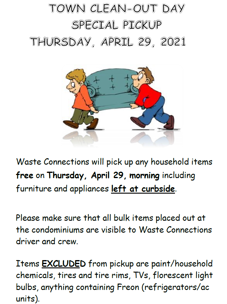 Town Bulk Items Clean Out Day Flyer (PNG)