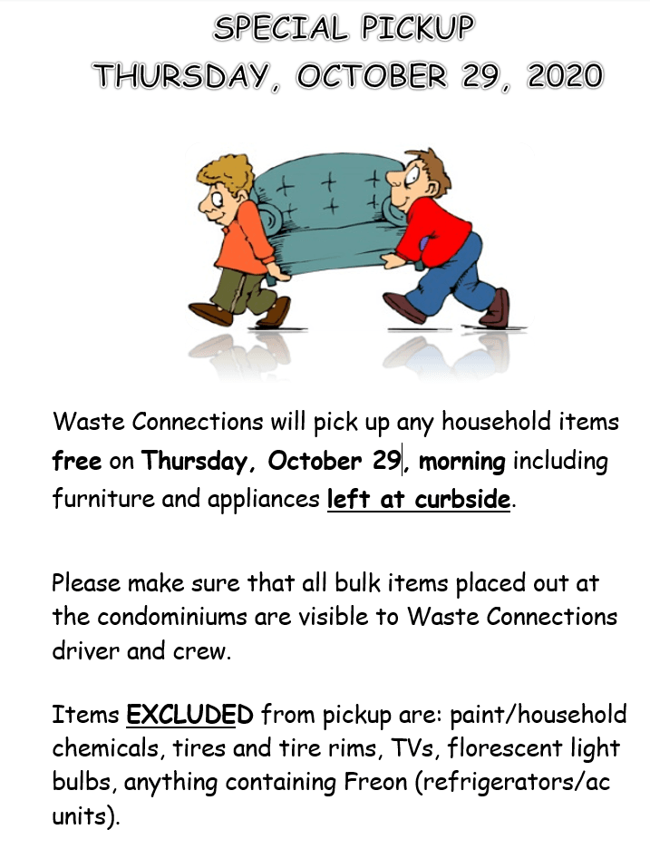 Town Clean Out Flyer October 29 2020 (PNG)